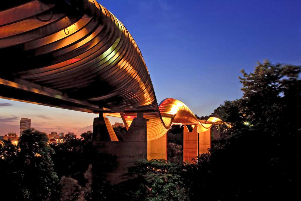 The lights on the Henderson Waves Bridge provide a subtle glow from within.